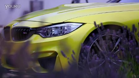BMW M4 OVERVIEW from Pebble Beach (with Interviews)